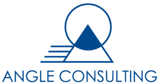 ANGLE CONSULTING LTD